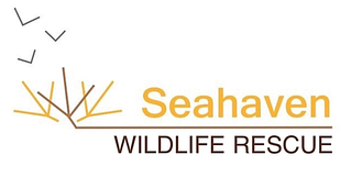 Seahaven Wildlife Rescue